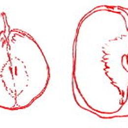 Caramel-pomme&poire 100g洋梨キャラメルりんごジャム