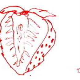 Fraise 50g 苺ジャムバニラ風味