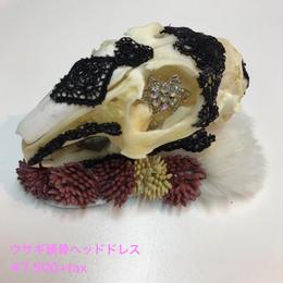 魔界ノ風鷹/マカイノカゼタカ ウサギ頭骨ヘッドドレス K45