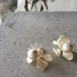 """Innocent  Bouquet イノセント・ブーケ""  片耳 /紫陽花、樹脂/ チタンピアス"