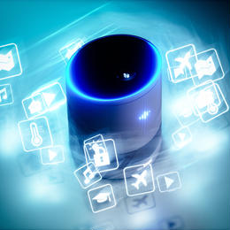 【地域限定】【賃貸/分譲マンション向け】 AIスピーカー 初期設定(各種製品をお持ちの方専用)