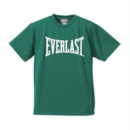 ビッグロゴドライTシャツ (GREEN×WHITE)