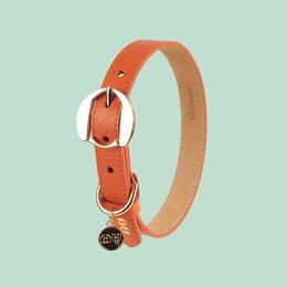 Hachiko Dog Collar ORANGE