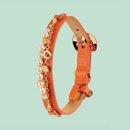 Monalisa Dog Collar ORANGE