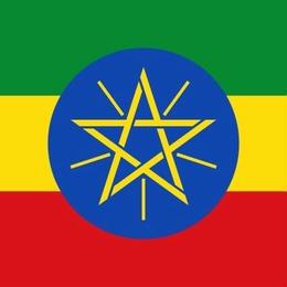 「華やかな明るさ」エチオピア イルガチェフェG1  200g