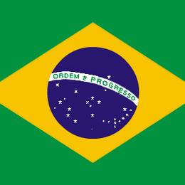「香ばしい丸い苦味」ブラジル バージングランデ農園 200g