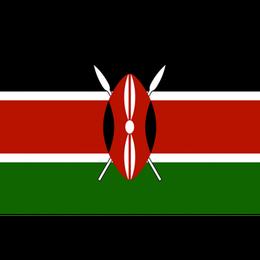 「華やかな力強い苦味」ケニア キリマヒガ(フルシティロースト) 210g
