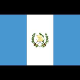 「上品な苦味」グアテマラ サンタフェリーサ農園 200g