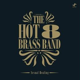 "(12"") Hot 8 Brass Band / sexual healing  (soul/boogie)"