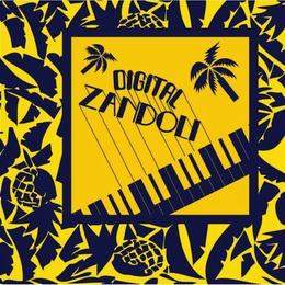 (CD) V.A. / DIGITAL ZANDOLI                   <Boogie / calibian / 80s>
