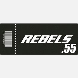 【TICKET】REBELS.55 C席 2018.4.27 後楽園ホール