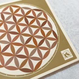 (15㎝)糸かけ曼荼羅専用ボード・6枚セット「あしたのたね」オリジナル  のコピー