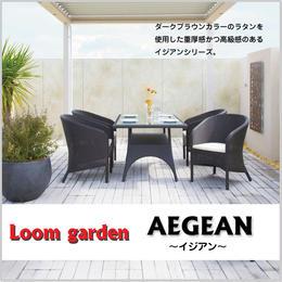 【Loom  garden ロムガーデン】≪イジアン≫ ダイニングテーブル 人工ラタン (ダークブラウン)  TK-1199