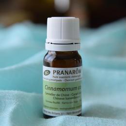 《シナモン・カッシア》 Cinnamomum cassia    10ml