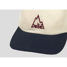 """BELIEF"" SUMMIT 6 PANEL (NATURAL)"