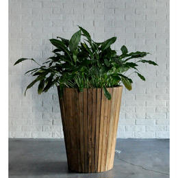 d-Bodhi FLOWER POT LARGE