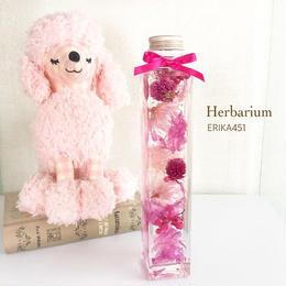 ハーバリウム〈pink×pink〉