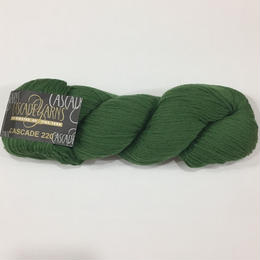 cascade 220     9430 HIGHLAND GREEN
