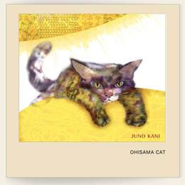 おひさまキャット OHISAMA CAT