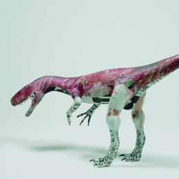 杉﨑良子作品 【お肉大好き】 「 時を身に纏って ーシンブンシキョウリュウ」展出品 ヘレラサウルスHerrerasaurus