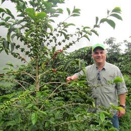 パナマ カルメン農園 ワイニー 500g