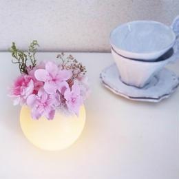 ニオイザクラのぼんぼりライト Petite