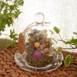 ガラスドーム*小さなお花畑