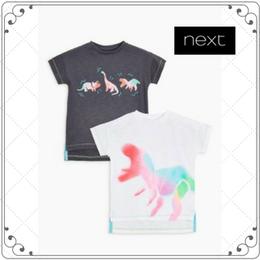 恐竜柄 スプレープリント 半袖 Tシャツ 2枚セット  (2~6歳)