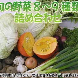 """【定期品】【こだわり】""""定期""""宅配サービス「栄養機能性野菜Mセット」送料無料"""