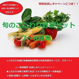 【お試し】【初めての方限定!】「おためしセット」Sサイズ(旬の「栄養こだわり野菜」7~8種類)