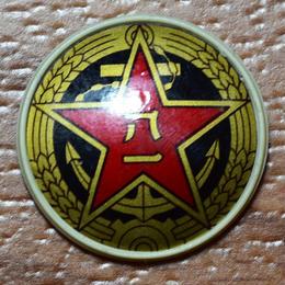 中国人民解放軍87式帽章(プラスチック製)海軍