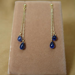 Twin BlueSapphire Design Earrings