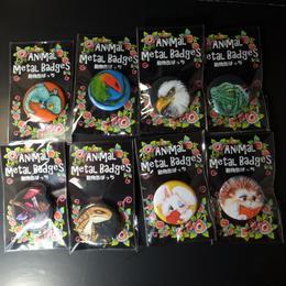 動物缶ばっち  8セット!!