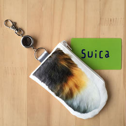 CAT PAW PASS CASE - Tricolore