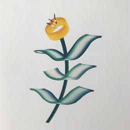 【オチアイハルカ】植物のポスターの受注販売  no.20