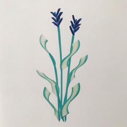 【オチアイハルカ】植物のポスターの受注販売  no.2