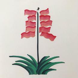 【オチアイハルカ】植物のポスターの受注販売  no.17