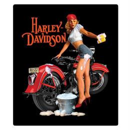 H-D® Wash Babe