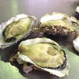 小長井牡蠣(税込)