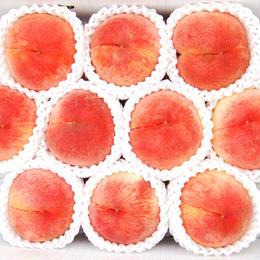 【みんなでおいしく】川中島白桃 3kg(9〜11玉)
