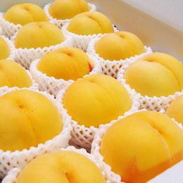【期間限定】黄金桃 3kg(10〜12玉)