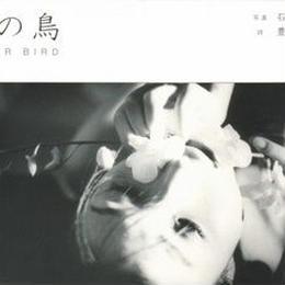 水の鳥 / 石川文子 豊原エス