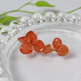 紫陽花のドライフラワーピアス(赤)
