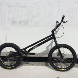 "ECHO 20"" Mark VI Bike"