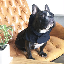 大きな丸衿のコート(濡羽色)/ High Collar Winter Coat  (Black)