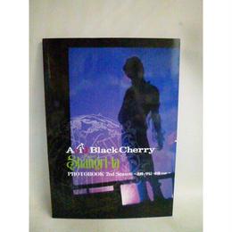 【中古】[代引不可] Acid Black Cherry Project Shangri-la シリーズ・ドキュメンタリー PHOTOBOOK 2冊セット 3900SK