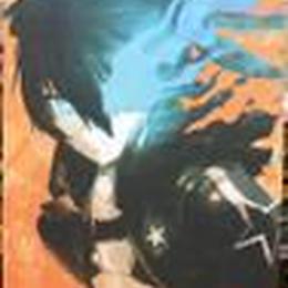 【中古】 ブラック★ロックシューター描き下ろし特大タペストリー 3535SK