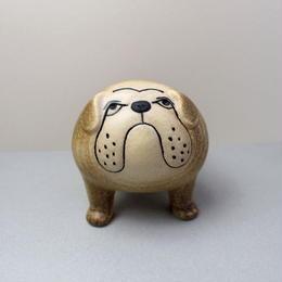Bulldog  brown / ブルドッグ ブラウン
