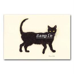 猫ポストカード15