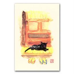 猫ポストカード12